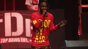 Kendrick-Lamar-hood-by-air-sweater-UpscaleHype-4